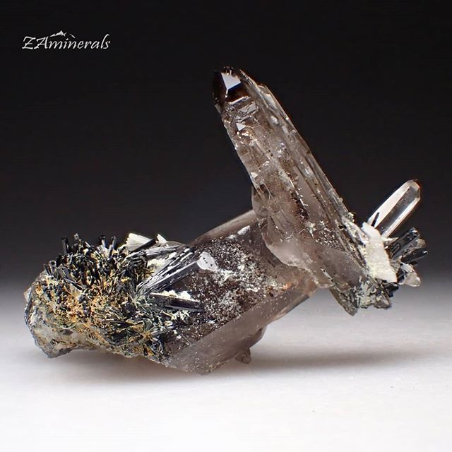 An intriguing cluster of #SmokyQuartz and #Aegirine crystals from #Malawi Custom Label: VI17 Place your bid today! Store link in bio #ZAminerals #RockOn #Crystals #Minerals #NoFilter #mineralcollector #RockCollection #RockShop #Geology #MineralsForSale #CrystalsForSale #crystal #crystallover #cristais #gem #igdaily #africancrystals