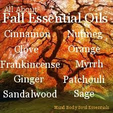 Free Essential Oil Aromatherapy Recipes and tips! - Mind Body Soul Essentials. Reasons why, my Autumn Decadence soap is perfect.