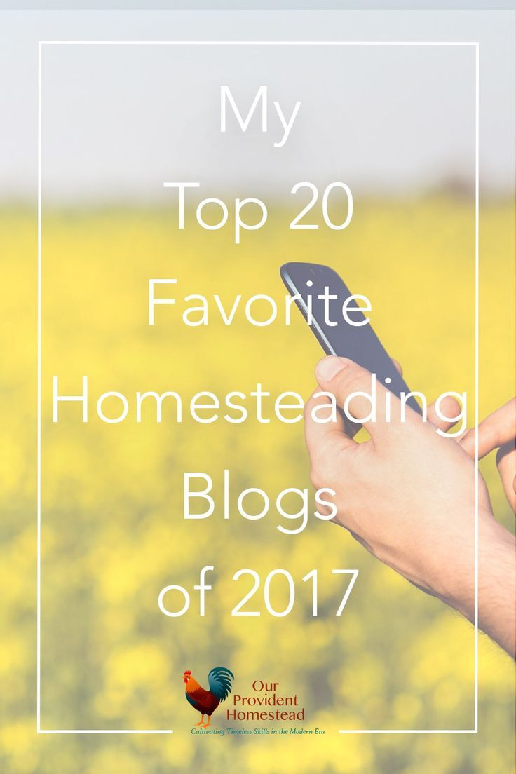 Do you have favorite blogs you follow online? Here is a list of our top 20 favorite homesteading blogs and why we love them. Blogging   Homestead Blogs