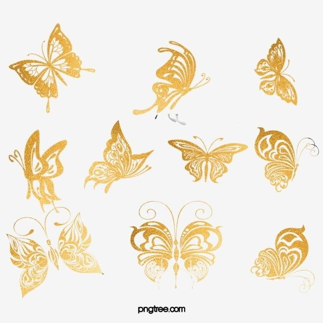 Beautiful Butterfly Butterfly Clipart Butterfly Golden Butterfly Png Transparent Clipart Image And Psd File For Free Download Beautiful Butterflies Butterfly Clip Art Butterfly