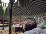Westland Farm, Barnstable, Devon Collection of yurts and Shepherds huts Looks pretty nice