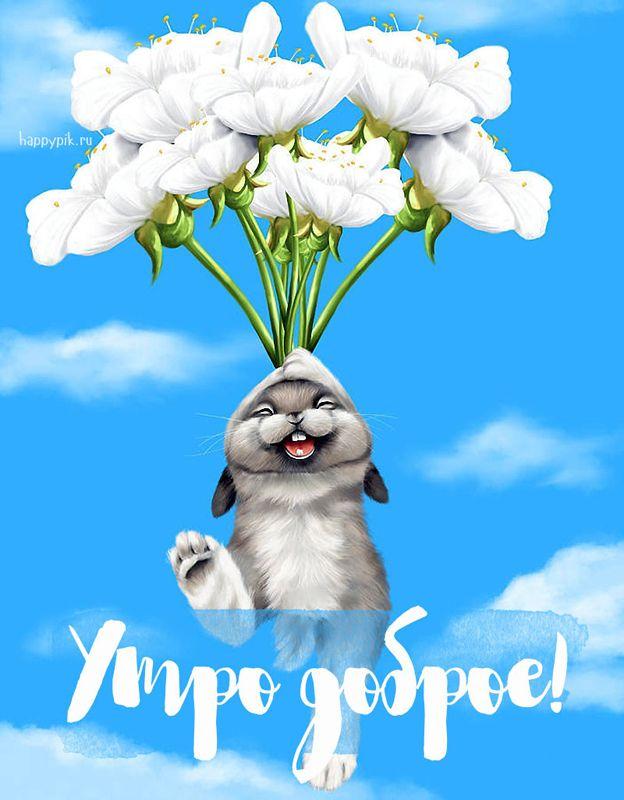 Открытки доброе утро позитивные смешные, открытка скрапбукинг