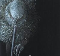 Nikki McIvor's Original Art - 'Nightblindness' - 2013 Manukura White Kiwi