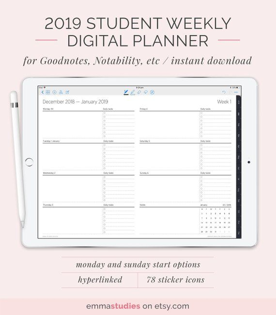 2019 Digital Weekly Student Planner with Tabs College Customisable