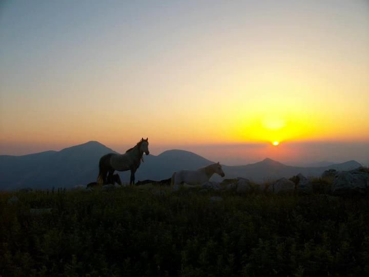 GREECE CHANNEL |Agrafa mountains-Greece