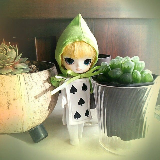 little dal+ 〈soldier of cards〉