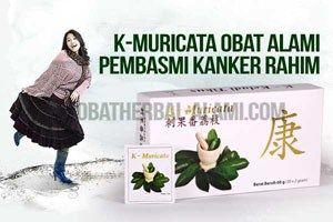 """""""Obat herbal kanker payudara, serviks K-Muricata teh antikanker alami"""""""