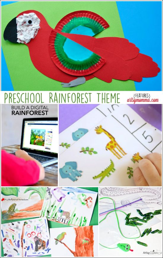 forest preschool theme 17 best images about theme rainforest on 802