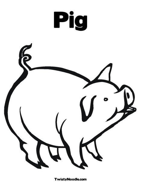 use every part pig diagram