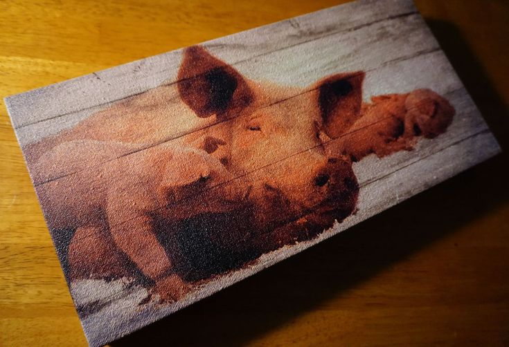 MAMA PIG & PIGLETS Wood Framed Canvas Sign Rustic Country Farm Home Decor NEW #OhioWholesale #Country