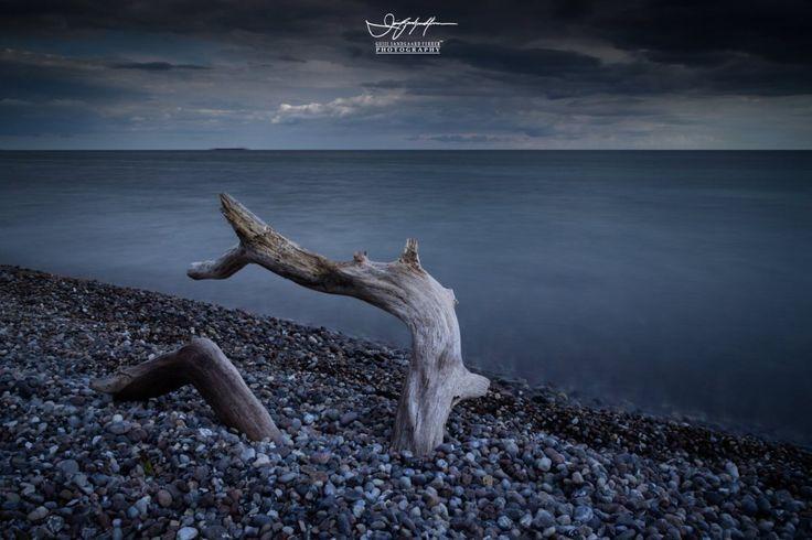 Blue Velvet | guiie sandgaard ferrer