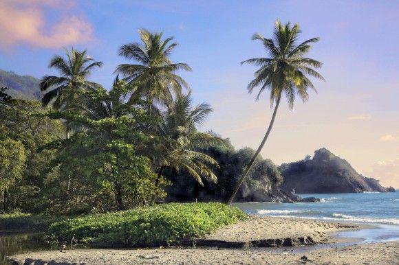 Tobago und Trinidad, die südlichsten Inseln der Kleinen Antillen, sind berühmt für ihre karibische Küche.