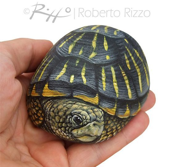 Unique Hand Painted Tortoise A Wonderful Box by RobertoRizzoArt