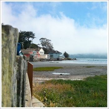 Worth The Drive... Marshall, CA for oysters at Hog Island Oyster Co. + The Marshall Store. Go Where The Pros Go!