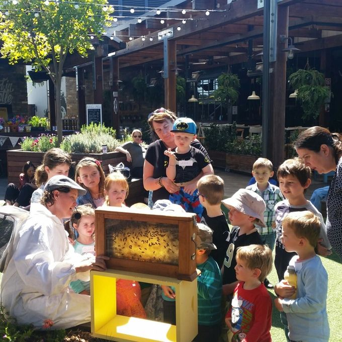 Our bees produce raw honey in the heart of the city. Help us help the bees, bee part of the urban revolution.