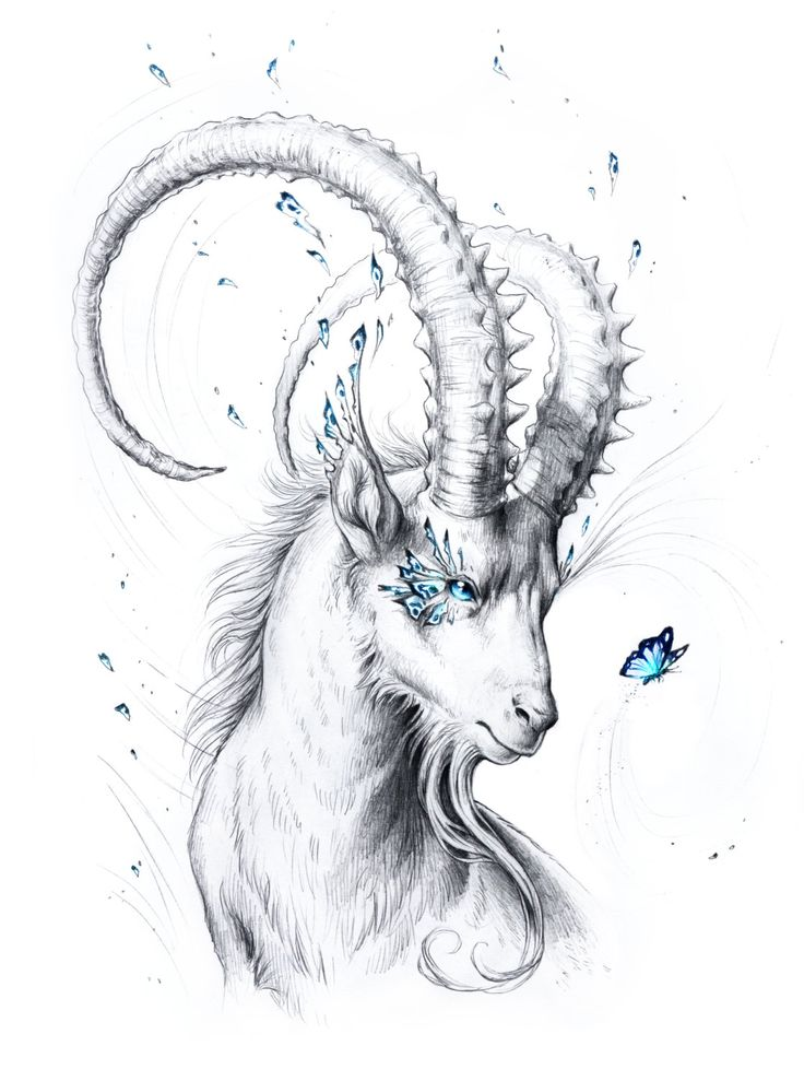 Capricorn – Special Edition Signed Fine Art Giclee Print – Wall Decor – Fantasy Goat Drawing