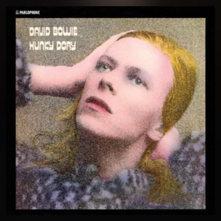 With the somewhat surprising news of David Bowie's death on January 10th 2016, I am dedicating this week to his albums or the albums of Bands that he influenced over the years. #ripdavidbowie  January 17th 2016! 366 albums of 2016, today I have David Bowie's Hunky Dory this album includes tracks Changes, Lie on Mars and Andy Warhol  #music #new&old  #albumproject #albumADay2016, #366albums #davidbowie #hunkydory #davidbowiehunkydory #lastdayofbowie