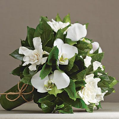 Gardenia Wedding Flowers Colors: white/cream Season: winter, early summer The classic garden standby, gardenia blossoms—mingled with gardenia foliage, phalaenopsis orchids, and tea plant leaves—make a bouquet that's as fragrant as it is timeless.