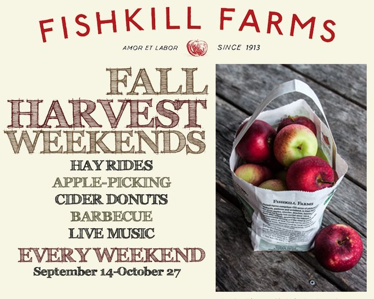 Fall Harvest Weekends are here! Come to Fishkill Farms, an apple orchard and diversified fruit and vegetable farm in the town of East Fishkill, New York, September 13-October 19, 2014. Each weekend will feature hayrides, apple-picking, cider doughnuts, barbecue, and live music. 9 Fishkill Farm Rd., Hopewell Junction, NY.