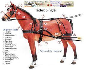 <b>Harness</b> <b>Parts</b> <b>Horse</b> http://www.ponyandcarriage.co.uk/zilco-carriage ...