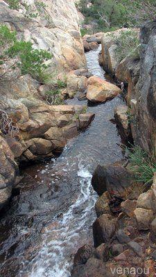 Ellis Brook-Bickley Brook Walk - Perth