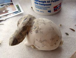 Use joint compound to smooth out paper mache - neat idea need to try - still have a bunch from our basement remodel.