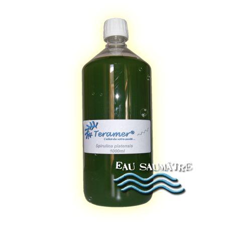 ✭ Spirulina platensis - Souche - 1000ml flacon ✭ La spiruline est une souche qui contient de nombreuses vitamines, protéines, minéraux. Elle contient un pigment particulier la phycocyanine. Elle va booster le système immunitaire des poissons et facilitera également leur digestions...