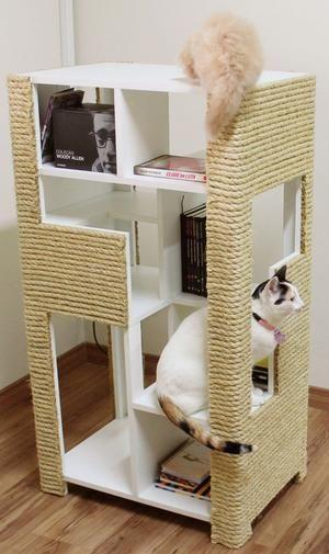 estante para livros e gatos