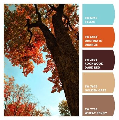 bedroom color scheme - aqua, orange, brown Paint colors from Chip It! by Sherwin-Williams