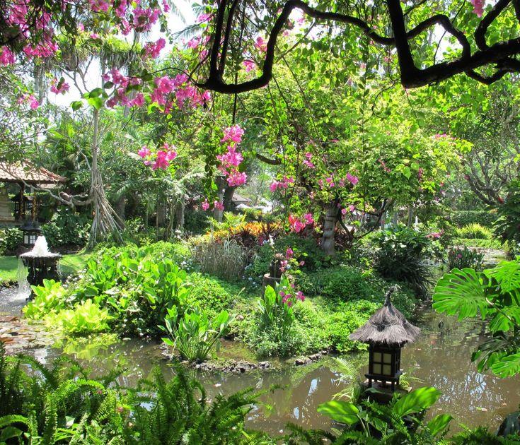 Garten Deko aus Gemüse - Das Gewürz Lavendel To plant a garden - vorgarten anlegen nordseite