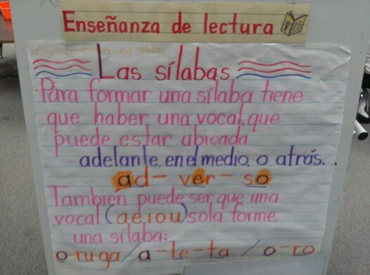 Good anchor chart for brief explanation of syllables.
