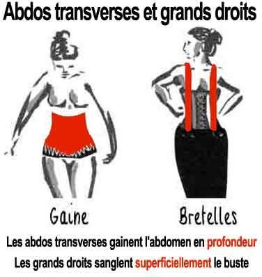 Pour perdre du ventre les transverses font mieux que les grands droits
