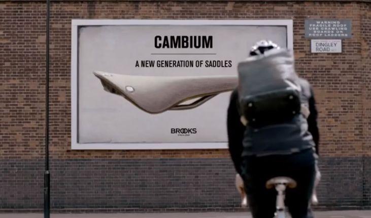 Sellini Brooks - Cambium