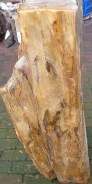 119 versteinertes Holz