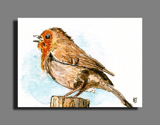 "ACEO Miniature Original Watercolor Ink 2.5""X3.5"" Robin Bird by Barry Jones #Miniature"