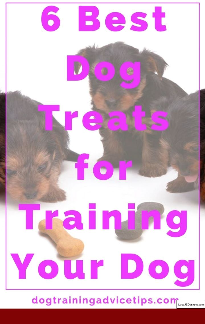 How To Train A Boxer Dog To Attack And Pics Of Dog Behaviour