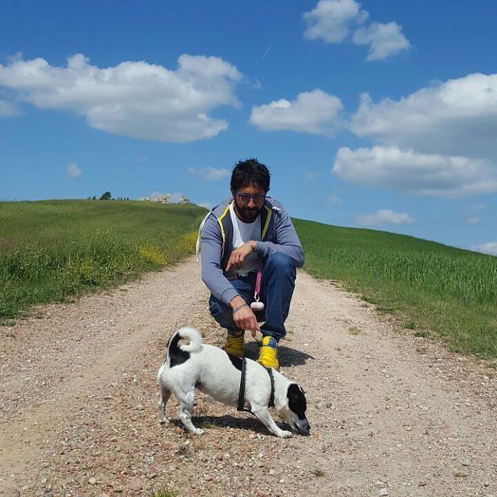Lara #my #girlfriend 's #dog  #tuscany #green #hills #jackrussell #blue #sky  http://Www.youtube.com/watch?v=tpDVTspxwjg