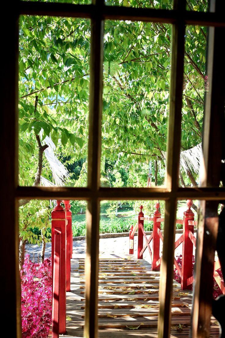Foto de Emi Paixão Mais fotos em www.fotografecompaixao.com.br