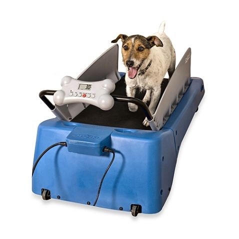 DogTread® Small Dog TDesigned for your dog's health and your convenience, the innovative DogTread Dog Treadmill brings the outdoors to you. Featuring a natural, low-profile running platform, this portable treadmill provides your dog with the best in conditioning and fitness.readmill