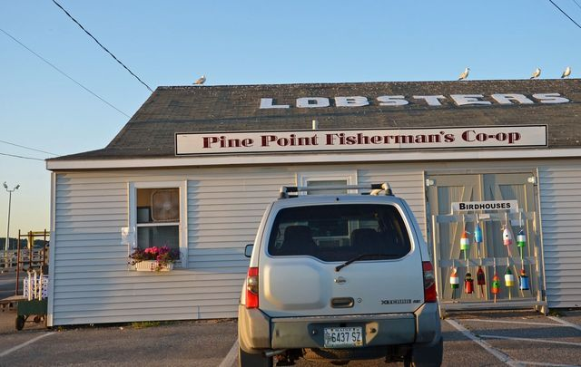 Buy Maine lobster cheap! The best place to buy live Maine lobster is Pine Point Fisherman's Co-op in Scarborough. They sell cheap lobster online, too!