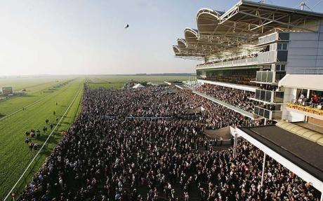 Newmarket Racecourse | Suffolk | England | Things to do near Cambridge | Local attractions |  Places to visit | Menzies Cambridge
