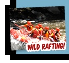 White Water Rafting Gatlinburg Tennessee .  Planning to do this, among other adventures, for my 45th with the girls.