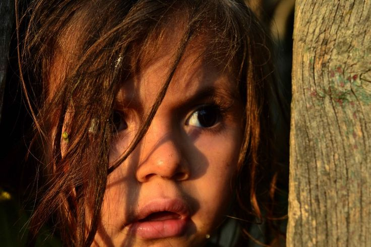 teama - photo by Sorin Bajan