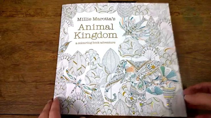 Colouring Book Animal Kingdom Tips And Walk Through
