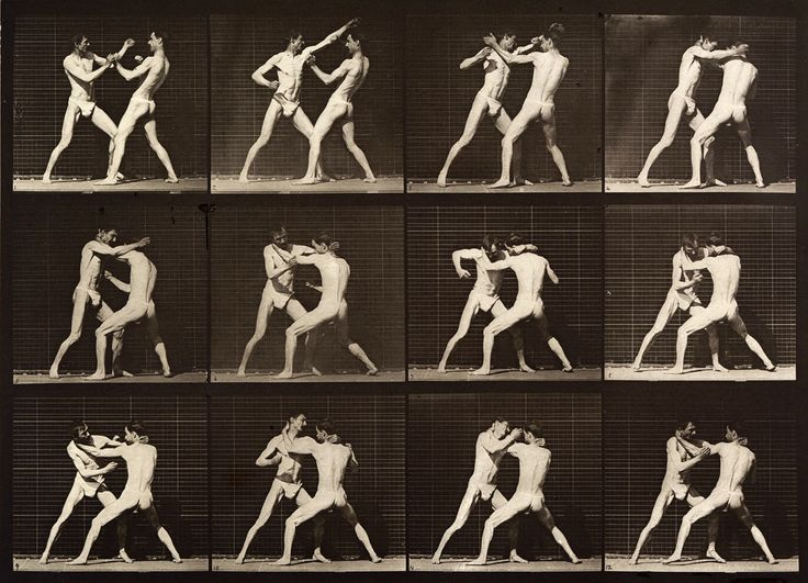 Brain Magazine - Page Pute - Des photos de Eadweard Muybridge transformées en…