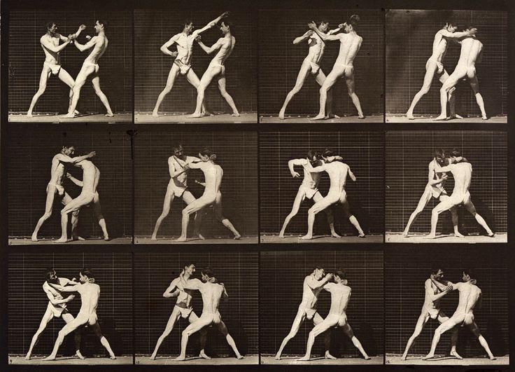 Brain Magazine - Page Pute - Des photos de Eadweard Muybridge transformées en gif