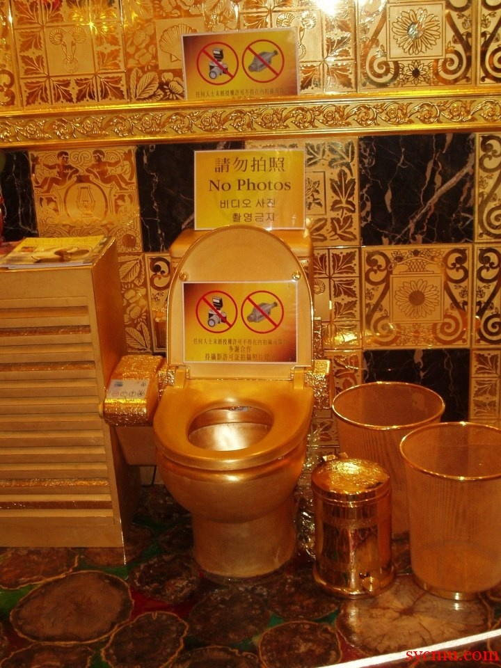 toilet made of gold. 112 best Toilets  loo s water closets and latrines images on Pinterest Toilet seats A project