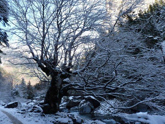 El invierno con imagenes tan impresionantes.