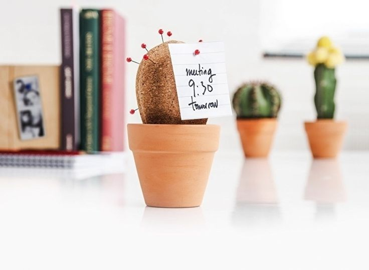 Suck UK - Kurken Cactus - Bureau Decoratie / Organizer