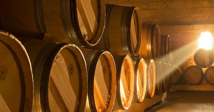 Das Aromen-ABC Teil 3 #Weinwissen #Aromen #Wein #Bordeaux